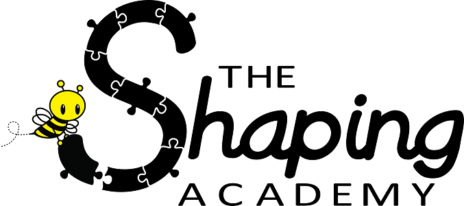 The Shaping Academy